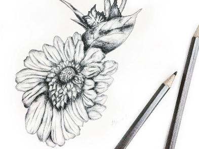 Flower Sketch 2